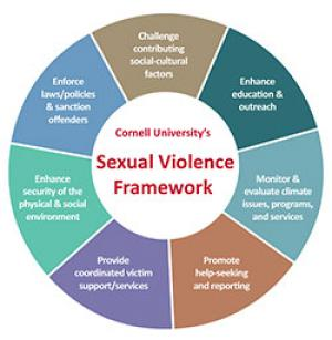 Sexual Violence Wheel Poster