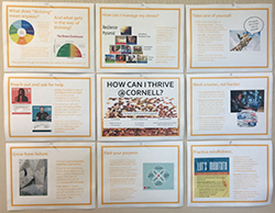 Thrive bulletin board mockup