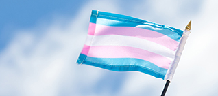 the blue, pink, and white transgender flag